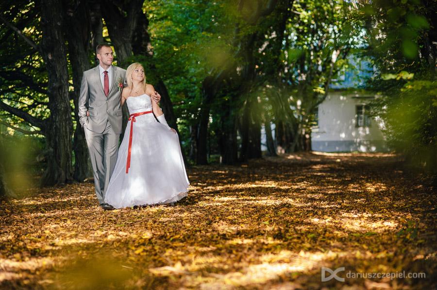 spacer w kolorowym jesiennym klimacie