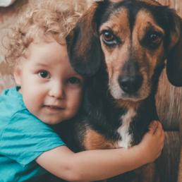 portret dziecka z psem podczas sesji zdjęciowej w wykonaniu Dariusz Czepiel fotografia